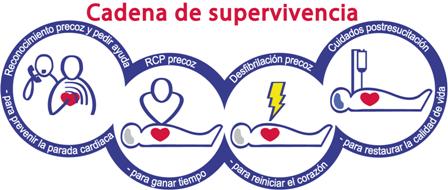 Primeros auxilios resucitacion RCP
